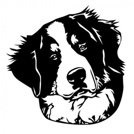 Bernese Mountain Dog Head (Small)