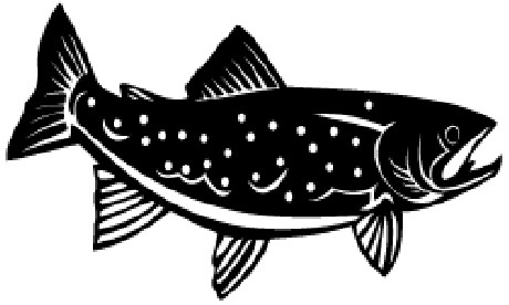 1532_trout_fish_sticker_decal